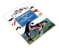 چراهای شگفت انگیز دلفین ها و نهنگ ها نشر محراب قلم