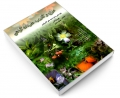 مزاج و کاربرد مفردات گیاهی نشر زعیم